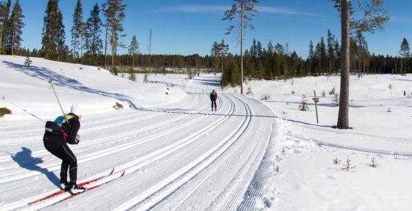 """""""Vasaloppstänk"""" gav bättre elevresultat – Workshop om skolutveckling i Filipstad"""